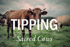 10-Sacred-Cows-that-Need-to-be-Tipped_1243_245x169